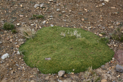 4-cusco-nazca-132