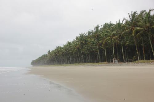 Strand auf der Halbinsel Cojimies