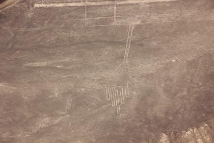 7-lineas-de-nazca-kolibri-092-klein