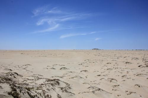 Die karge Wüste...