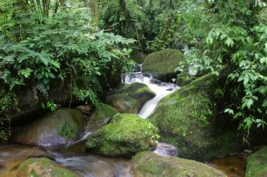 Am Weg zur Madre Selva Lodge