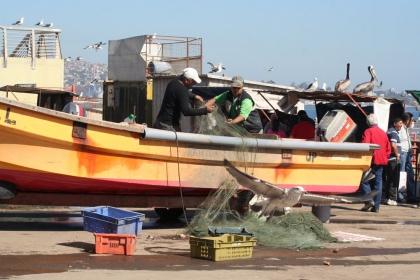 Im Fischerhafen