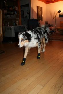 Schuhe für Tatezi 3