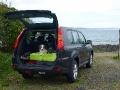 Tatezi und Wuschi brav im Auto