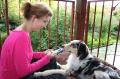 Gabi lässt Tatezi an der Zahnpastatube lecken